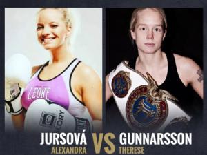 Jursová vs  Gunnarsson