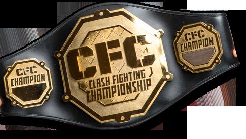 CFC Belt